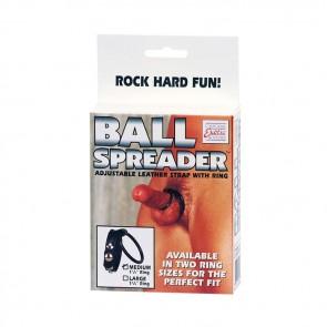 EREKCIJSKI PASEK Z OBROČKOM Ball Spreader - large